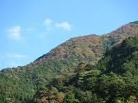 tsugawa11.jpg