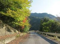 tsugawa9.jpg