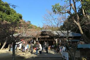 ushimado12.jpg