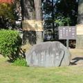 山口誓子 文学碑(衆楽園)