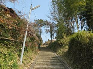 tougakuji4.jpg
