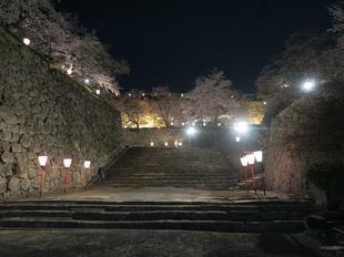 夜景10.jpg