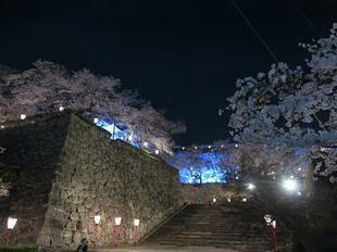 夜景12.jpg