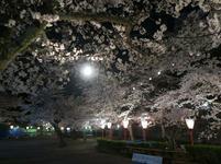 夜景14.jpg