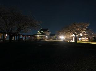 夜景24.jpg
