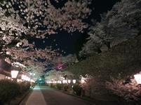 夜景41.jpg