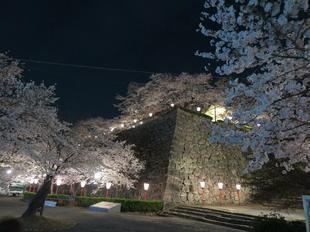 夜景9.jpg
