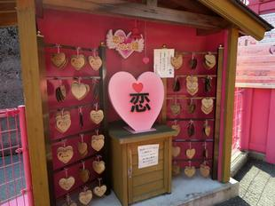 koiyamagata10.jpg