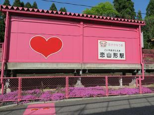 koiyamagata7.jpg