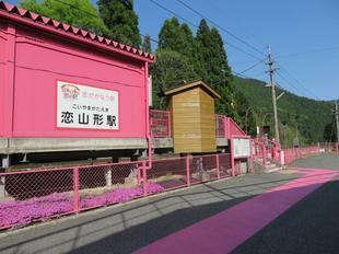 koiyamagata9.jpg