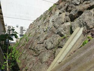 kyogomon14.jpg