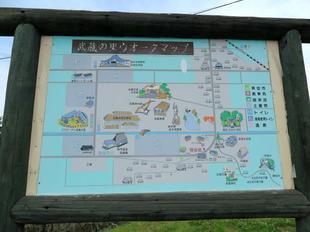 musashi-sato1.jpg