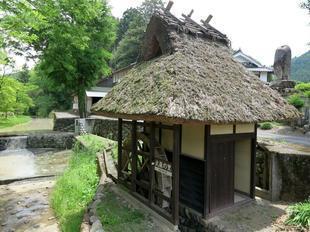 musashi-sato12.jpg
