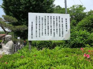musashi-seike4.jpg