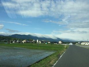 nagikumo1.jpg
