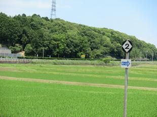 nishikatsumada1.jpg