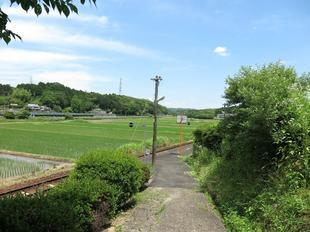 nishikatsumada10.jpg