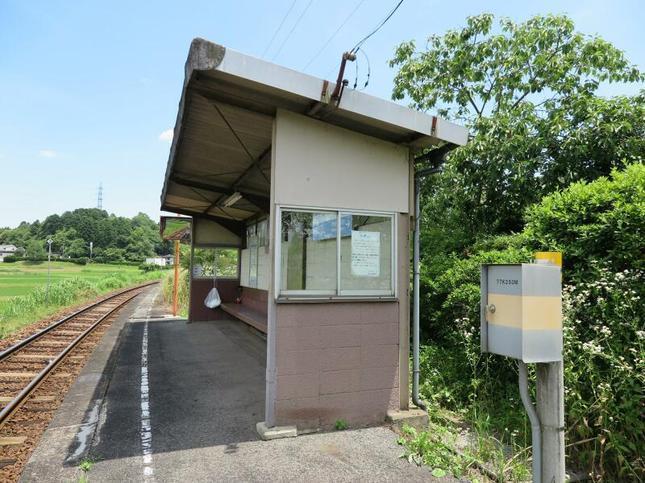 nishikatsumada3.jpg