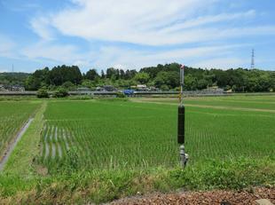 nishikatsumada5.jpg