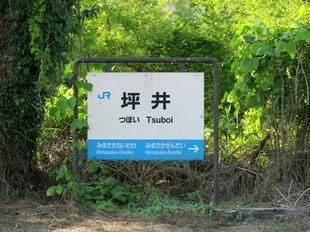 tsuboi11.jpg