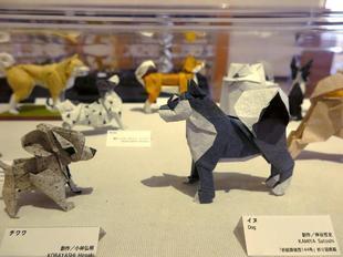 origami-19.jpg