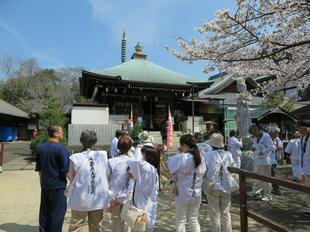 shikokumeguri31-3-11.jpg
