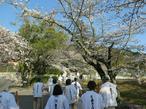 shikokumeguri31-3-36.jpg