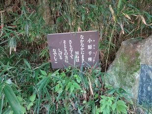 chikura1.jpg