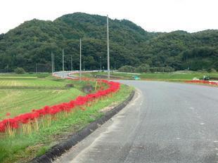 kokubunji-higan-2.jpg