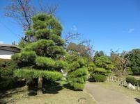 syuraku24.jpg