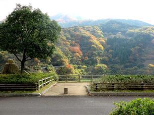 tsugawa25.jpg