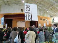 tsusyo13.jpg