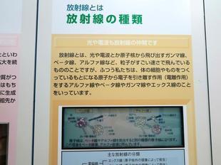 genshi3.jpg