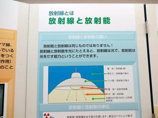 genshi5.jpg