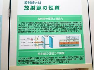 genshi7.jpg