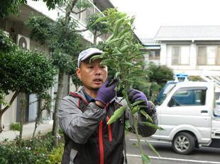 ueki21.jpg