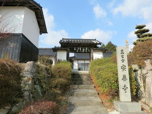 山名時氏 極楽山安養寺を修す
