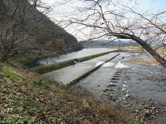 嵯峨井堰1.jpg