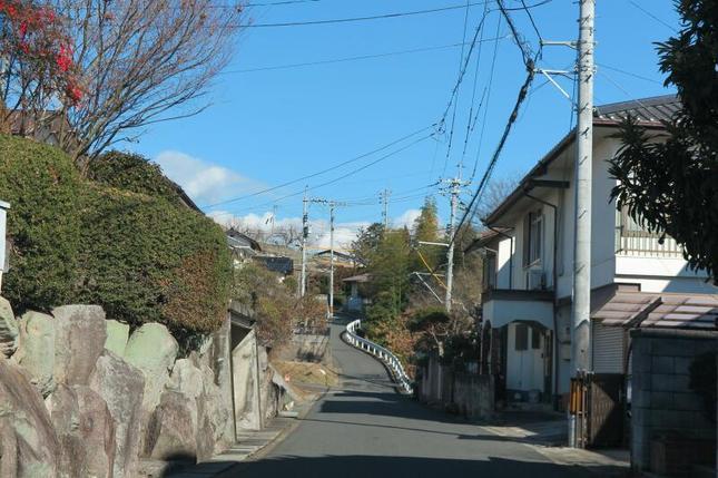 seiryodanchi4.jpg