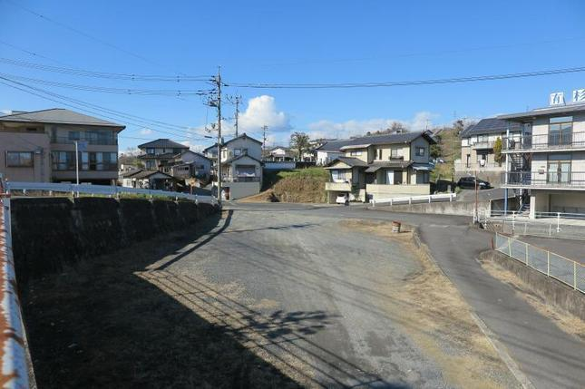 shinyashiki3.jpg