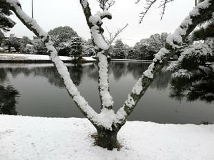 syuraku1-26-27-10.jpg