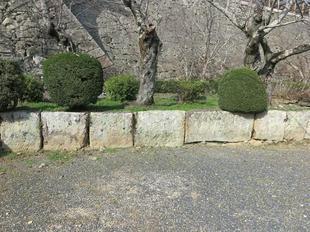 石垣3-5-12.jpg