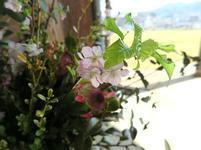 鶴山3-5-45.jpg