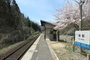 4-9-chiwa11.jpg