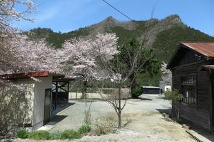 4-9-chiwa4.jpg