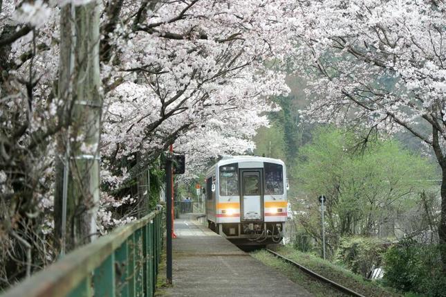 miuraeki12.jpg