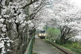 miuraeki14.jpg