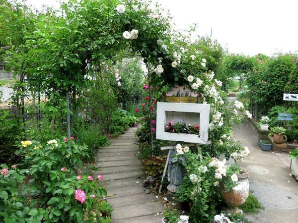 有本由美枝さん宅のバラ園です。