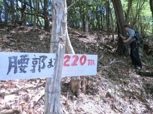 yahazu16.jpg