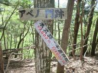 yahazu29.jpg